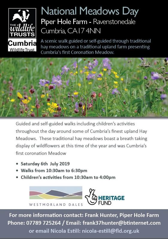 National Meadows Day | Friends of the Lake District