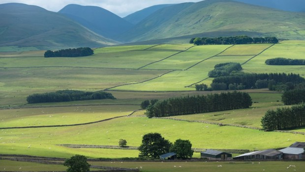 'Love Your Landscape' Small Grants Scheme