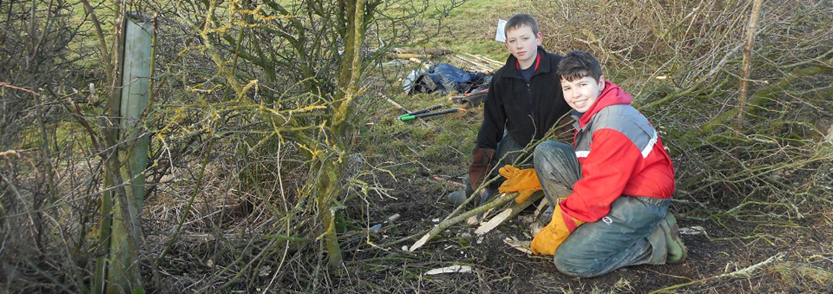 Staveley to host our Annual Hedge Laying competition