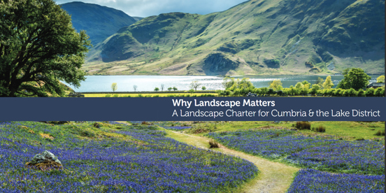Why Landscape Matters