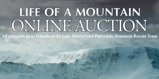 Life of a Mountain Auction
